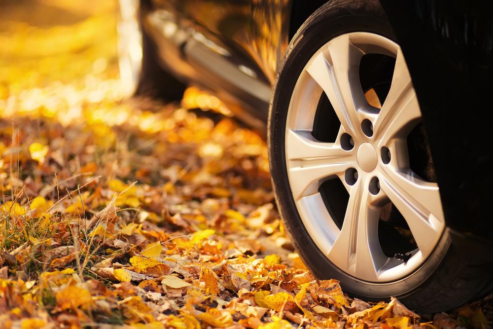 Как подготовить свой автомобиль к осени